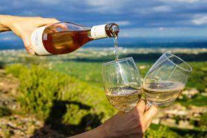 Ruta del Vino en Lanzarote. Lanzarote Experience Tours
