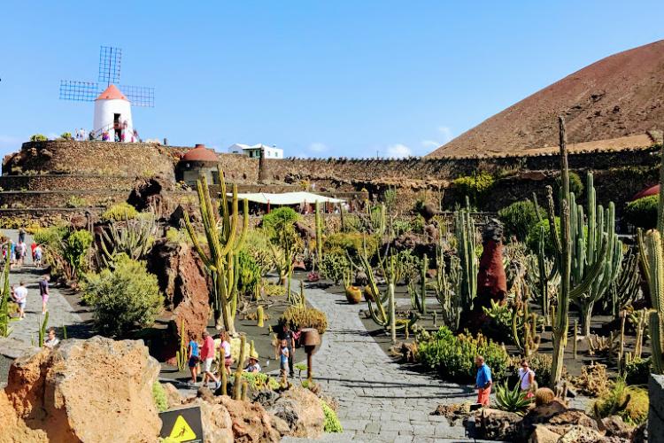 Kaktus-Garten.