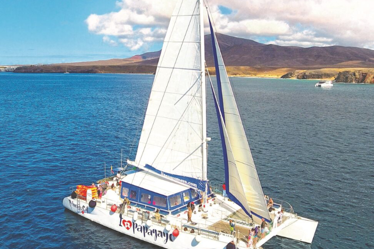 Papagayo catamaran 12