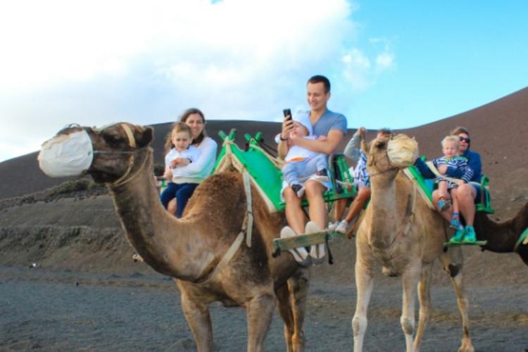 camel ride 5