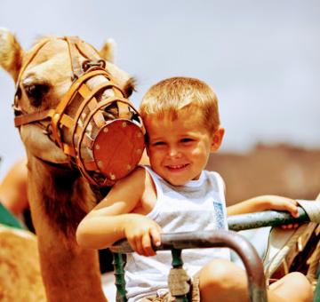 Paseo en camellos
